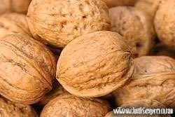 Walnut Buyers | Walnut Importer | Buy Walnut | Walnut Buyer | Low Price Walnut | Cashewnut Suppliers | Cheap Walnut | Wholesale Walnut | Discounted Walnut