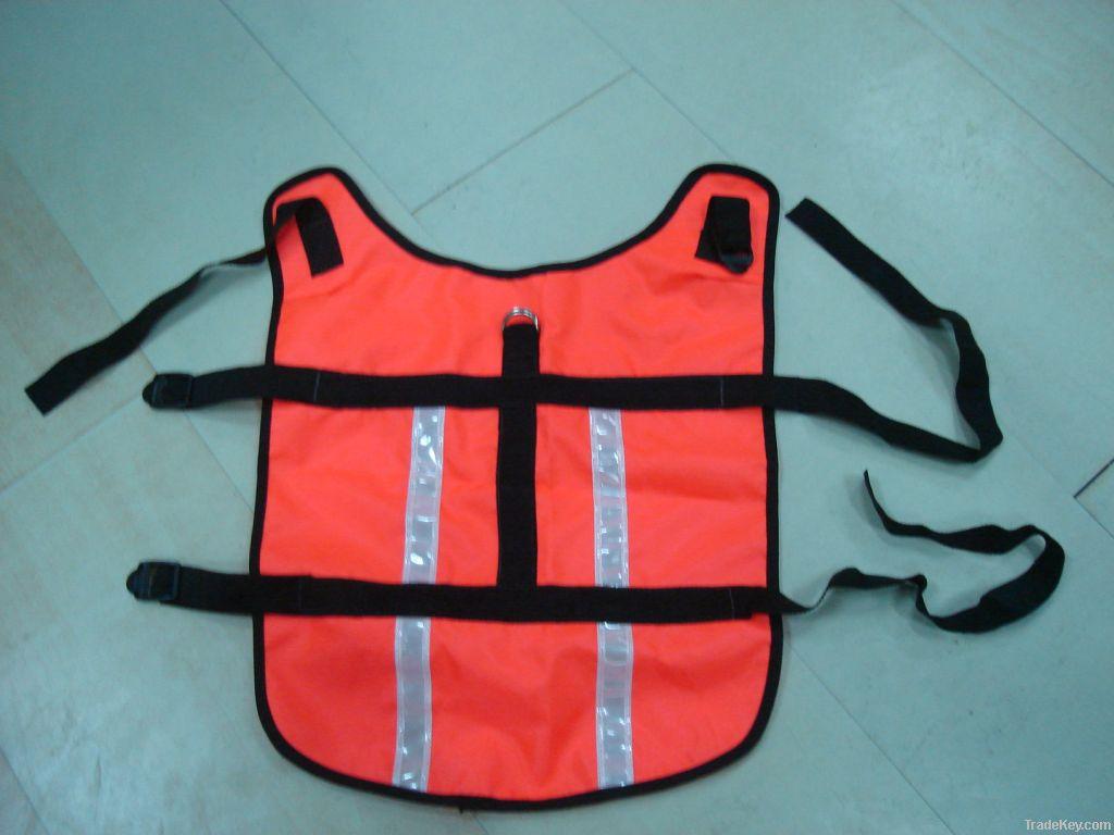 dog safety clothing