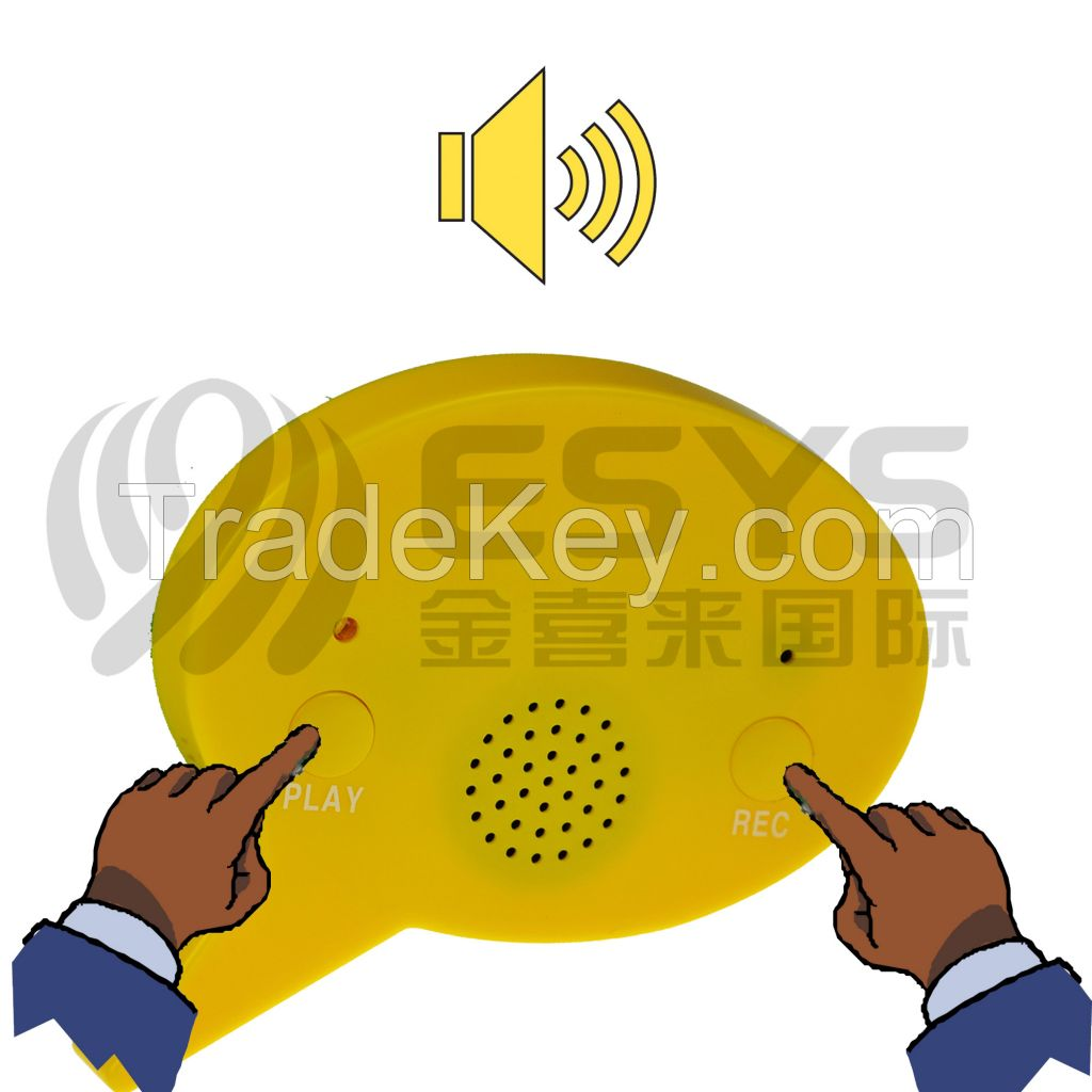 Custom music sound button