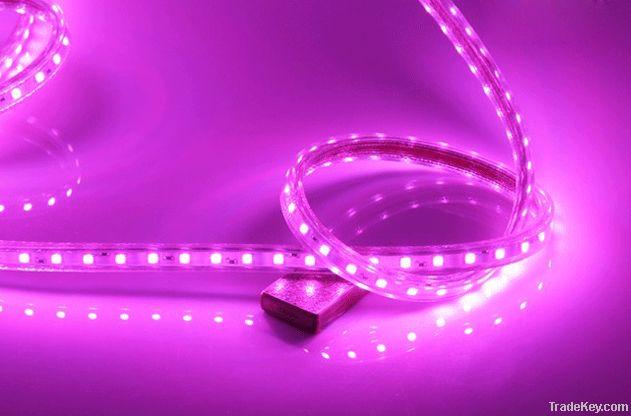 LED Strip Light, High Quality long life span waterproof