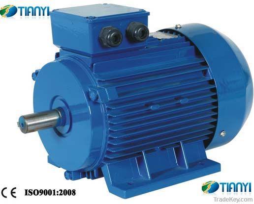 Electric Motor Three Phase Y2