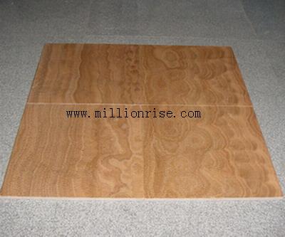 Fireplace,Counter top,vanity top,flooring,tile,slab,medallion,xxxxx