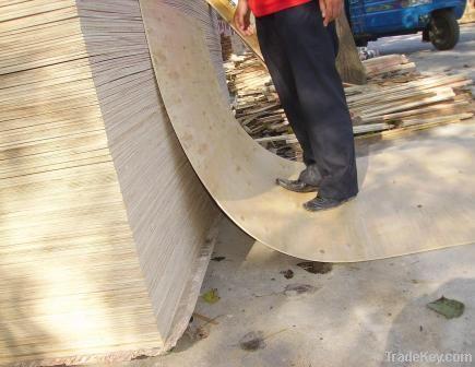 Poplar plywood