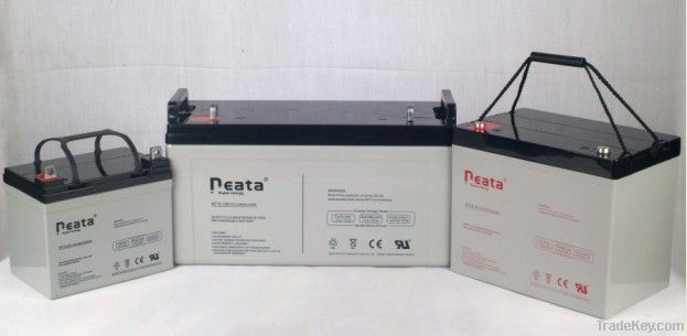 LED Emergency Light Lead Acid Battery 4V-4ah (ISO, CE, UL, RoHS)