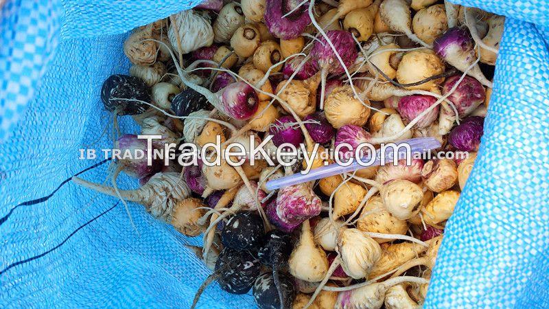 maca root, organic maca powder
