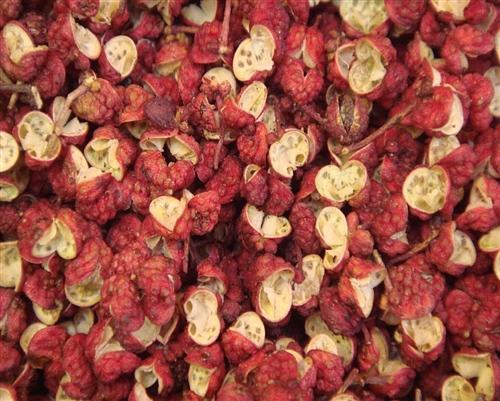 Selling Zanthoxylum Bungeanum