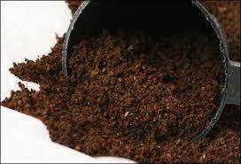 Organic Coffe