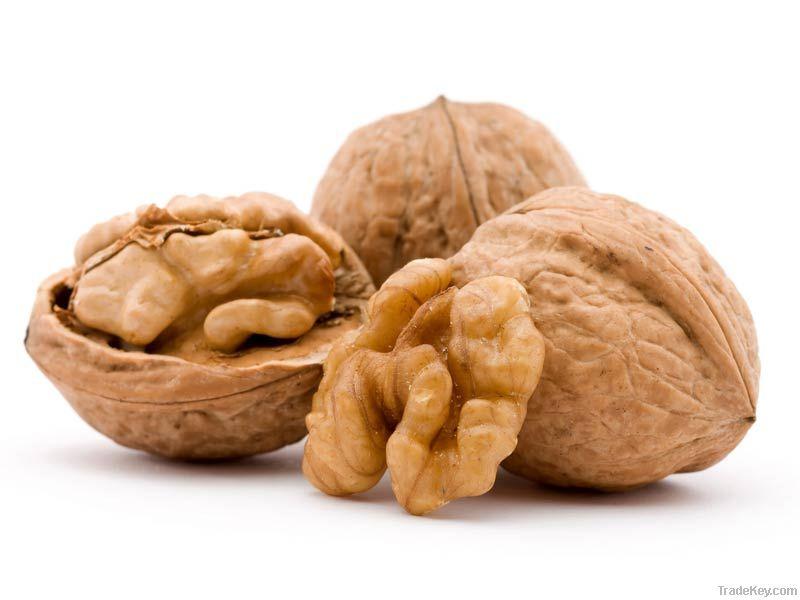 Walnut Kernels | Dried Fruits | Walnut Suppliers | Walnut Exporters | Walnut Manufacturers | Cheap Walnut | Wholesale Walnut | Discounted Walnut | Bulk Walnut | Walnut Buyer | Import Walnuts | Shelled Walnuts