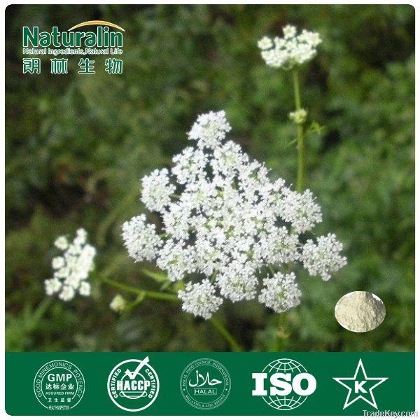 Cnidium Seed Powder Extract with 35% Osthole