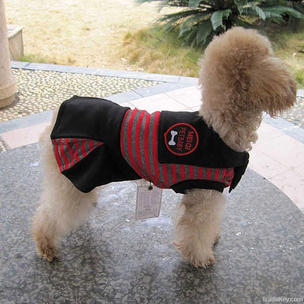cute summer clothes for nice dog