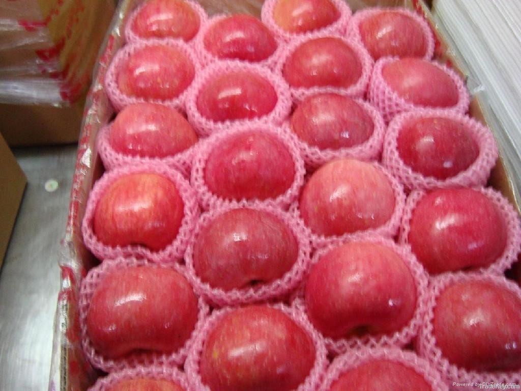 quanyuan fuji apple