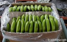 Fresh Bananas Available...