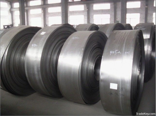 AISI 304 Constrution Material Stainless Steel Coil and Strip Made in C