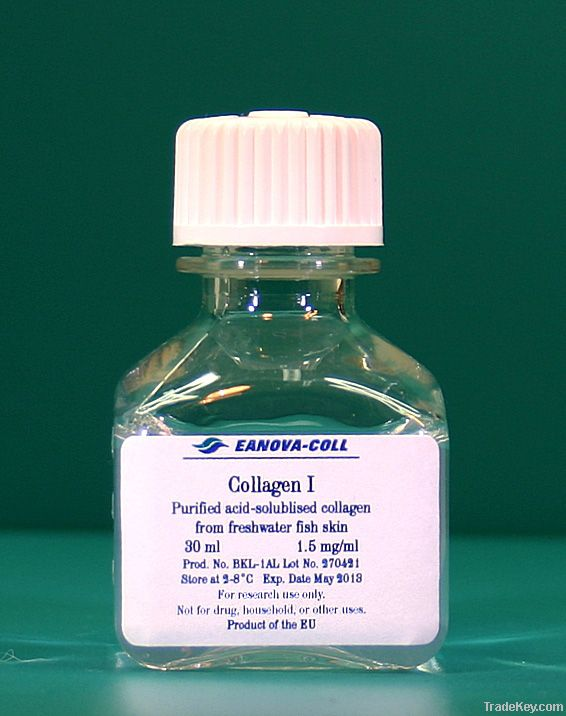 Acid-solubilised collagen type I