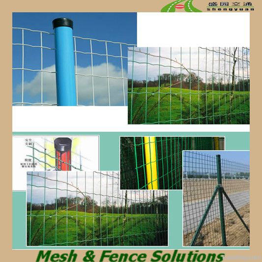 Both Decorative and Firm Euro Mesh for Planting Flowers
