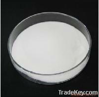 Sports Nutrition Supplement Whey protein Powder