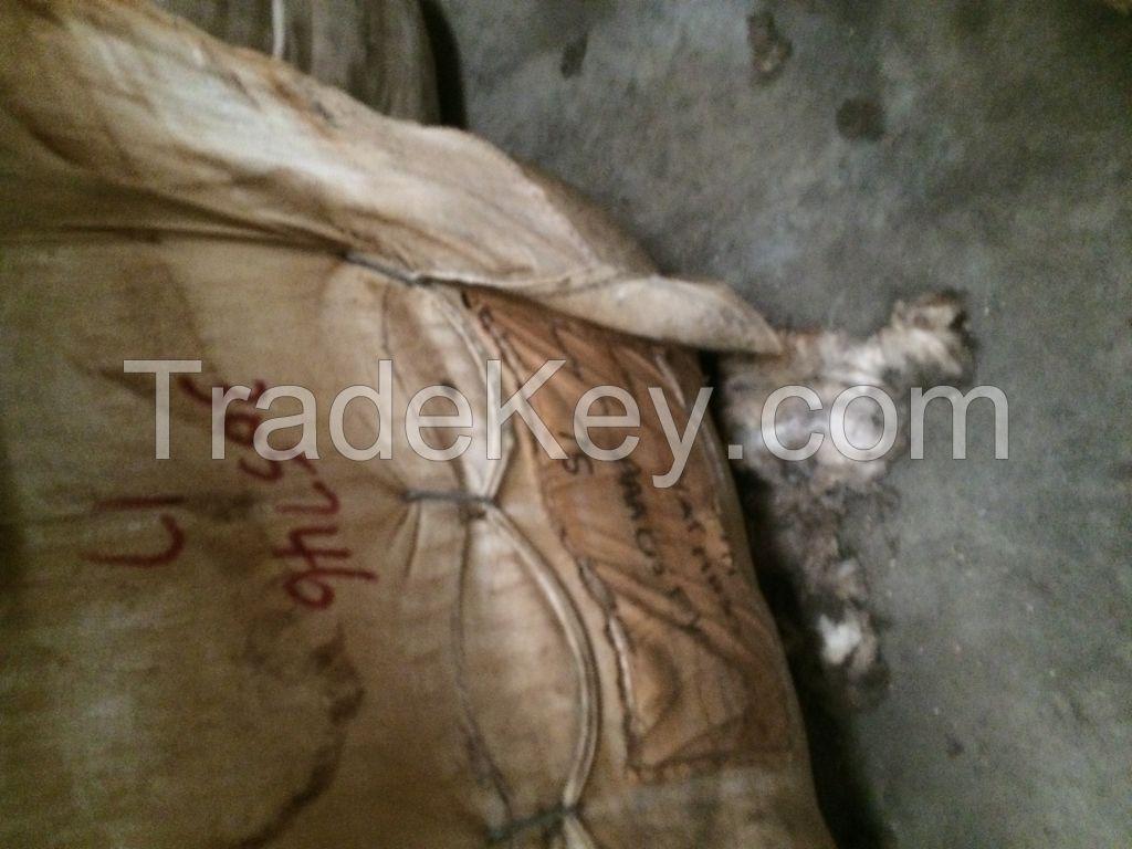 IWTO tested Awassi Wool