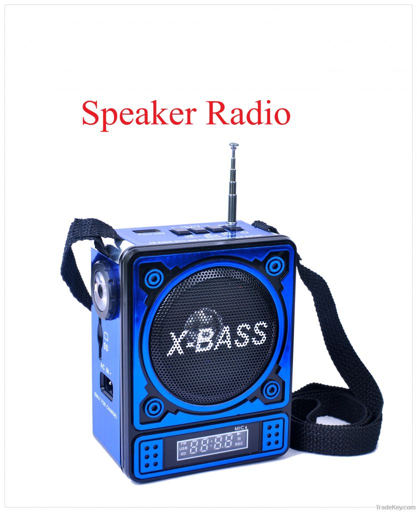 Torch Light Function Portable mini FM radio with USB/SD