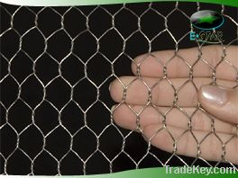 Electro galvanized hexagonal wire mesh with very competitive price