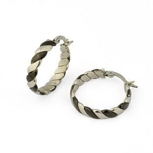 2013charming Jewelry of Stainless Steel Earring for Women (EQ8021)