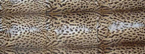 fur plate