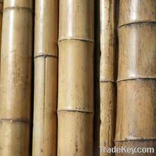 bamboo materials