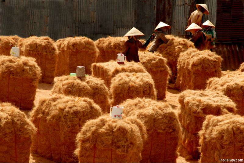 material coconut fiber in Vietnam