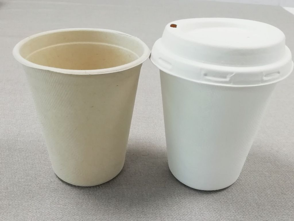 Biodegradable sugarcane pulp cup