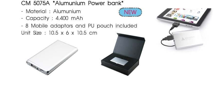 Power bank PW-10