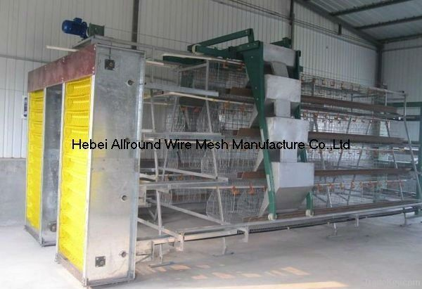 Poultry automatic equipment