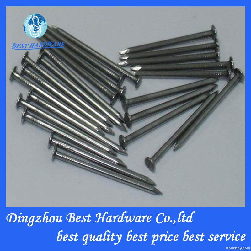 common round wire nails/common iron nail/polished common nail factory