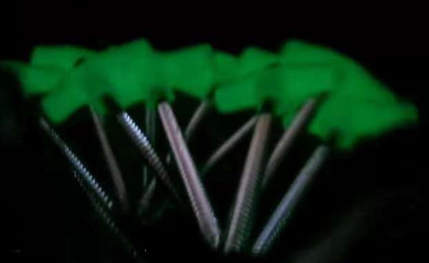 Glow Screw Peg | Good for Hiking, fix awning , tent , ground mats etc.