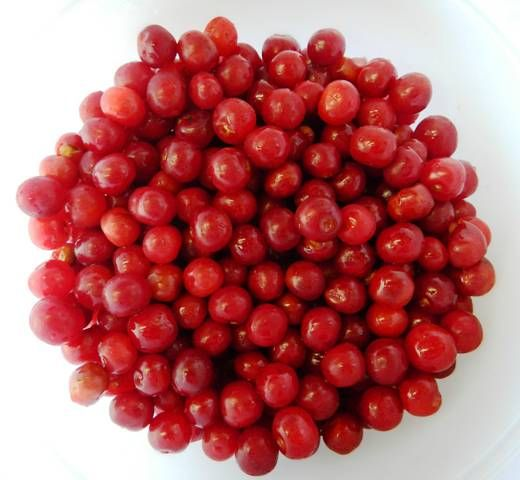 sour cherry and sweet cherry for sale