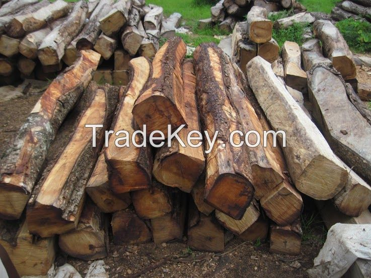 KOSSO AND DOUSSIE WOOD