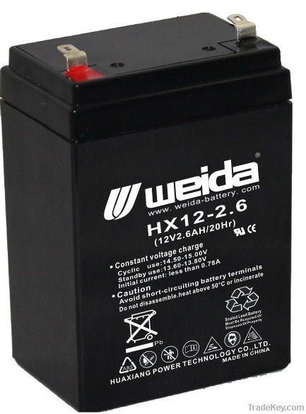 AGM Maintenance Free Battery