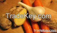 Fresh Ginger | Carrot And Fresh Garlic Clove