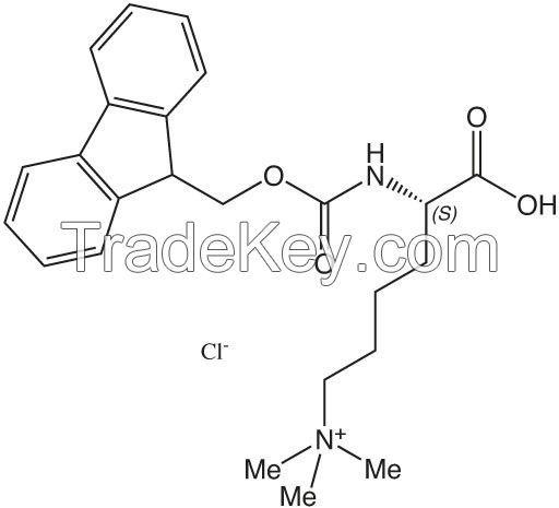 Cyclic Peptides