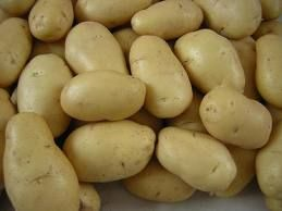 Holland Potatoes