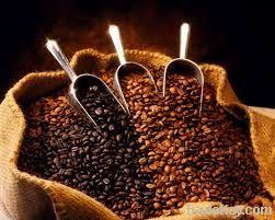 Costa Rican Highland Tarrazu Arabica Coffee