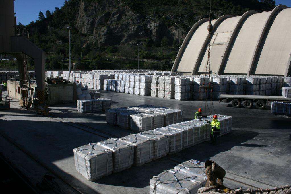Portland Cement / CEM II 42.5