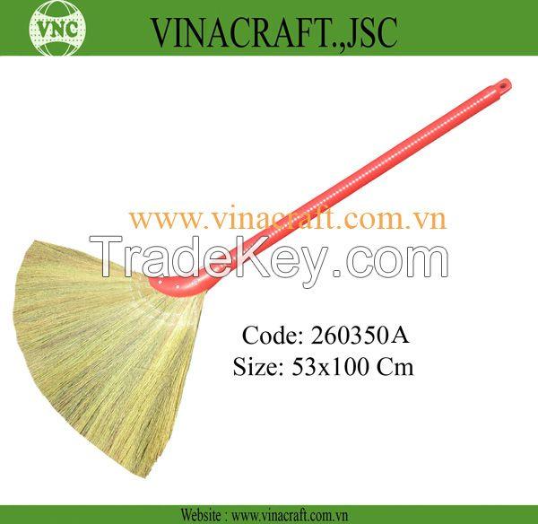 Vietnam grass broom with competitve price