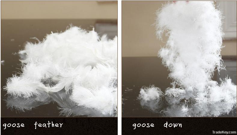 80% goose down duvet