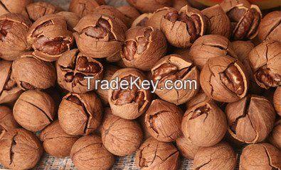 Pecan nuts Kernal/ pecans price
