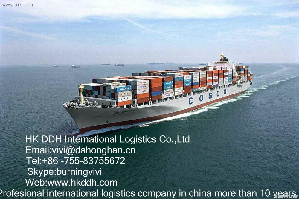 sea freight from shenzhen/ any port of china to phnom penh