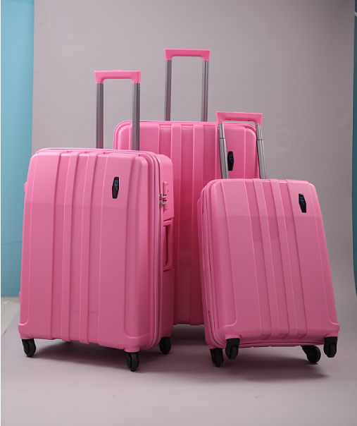 H2 luggage