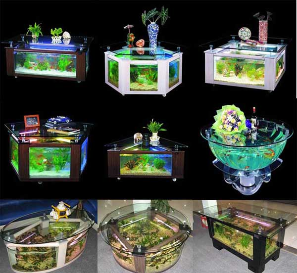 coffee table aquarium