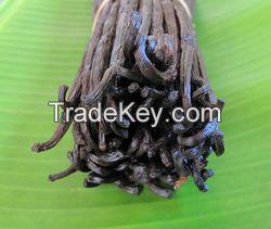 High Quality Vanilla Beans