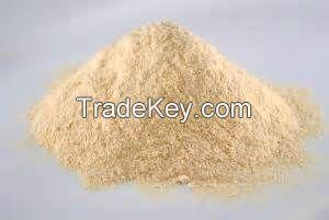 Top Quality Mango Powder