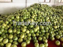 High  quality  pomelo
