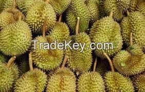 High  quality  fresh durians